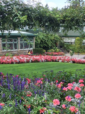 The Butchart Gardens : Vibrant colours throughout the gardens