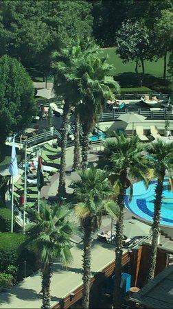 Jumeirah Creekside Hotel: 716