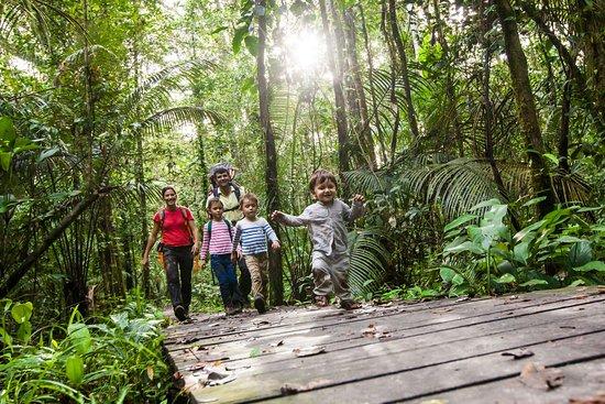 French Guiana: Randonnée en forêt au bagne des Annamites