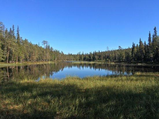 Oulanka National Park Visitor Center: ハイキングコースの途中にある沼です