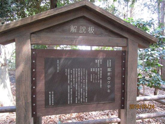 Tsurugashima, Japan: 説明看板