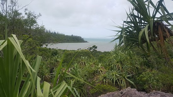 Shute Harbour, Australia: view of the bay from the trail