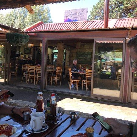 Artist's Cafe : photo1.jpg
