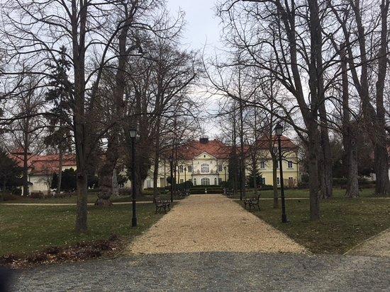 Rojtokmuzsaj, Hungary: From the garden