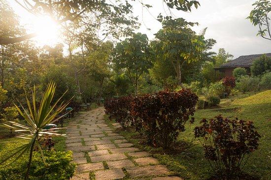 Landscape - Picture of Heritage Resort Coorg, Galibeedu - Tripadvisor