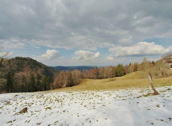 Reigoldswil, Switzerland: snow