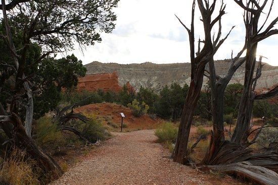 Kodachrome Basin State Park: Scenery Along Nature Trail