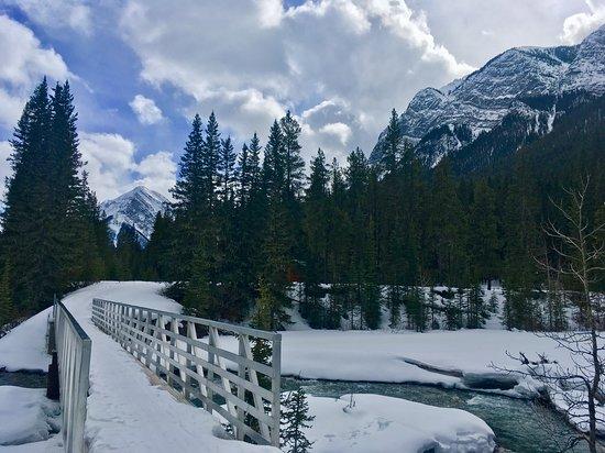 Spray River Trail Loop