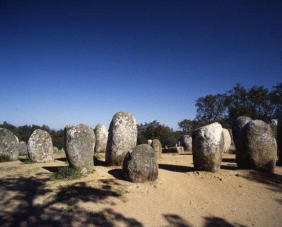 Menir e Pedras do Vale dos Cardos