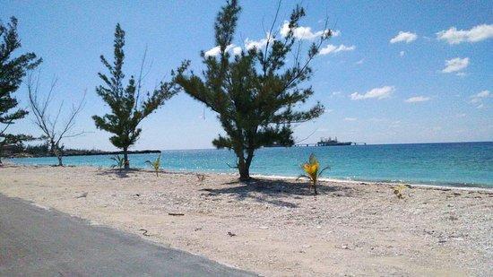 Grand Bahama Island Beach Eight Mile Rock