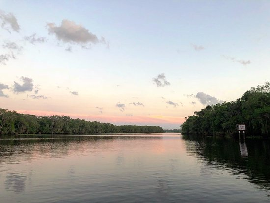 Tiny Houseboat Adventures: St John's River