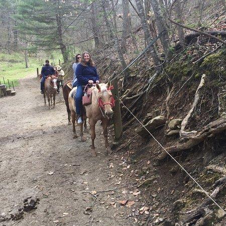 photo4 jpg - Picture of Sandy Bottom Trail Rides, Marshall - TripAdvisor