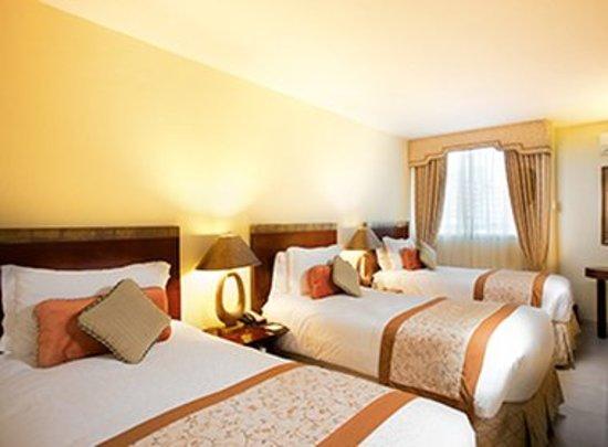 Toscana Inn Hotel: Guest room