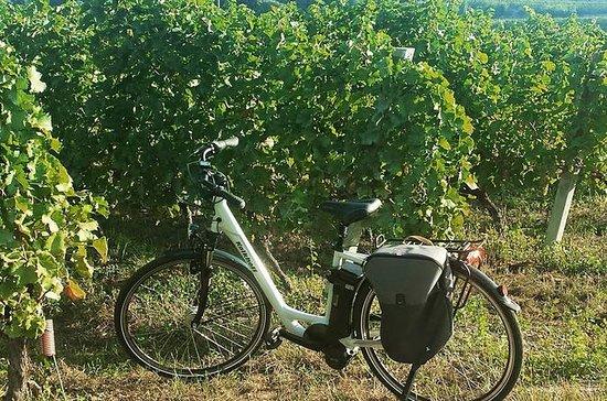 Excursion à vélo Valpolicella avec...
