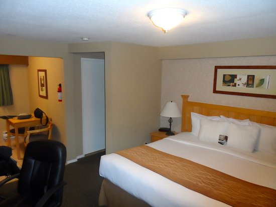 Comfort Inn and Suites North Vancouver Picture