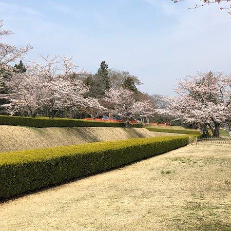 Sakura Castle Site Park