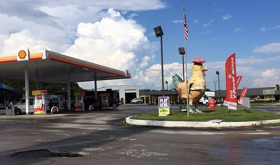 Elkton, Τενεσί: the front of the Shady Lawn Truck Stop with the chicken on the front lawn