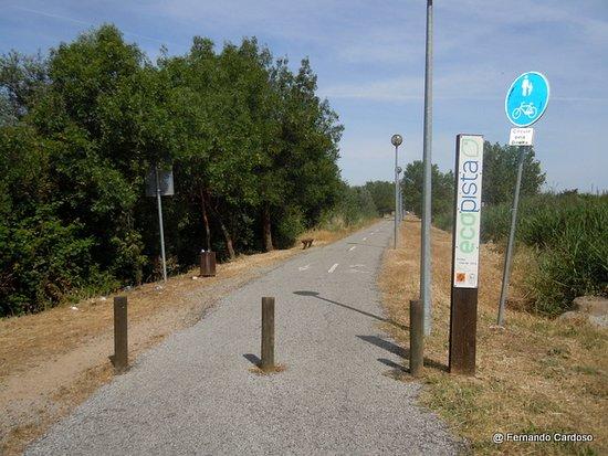 Ecopista de Evora - Ramal de Mora