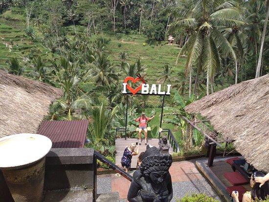 Tegalalang Rice Terrace: IMG_20180325_133432_large.jpg