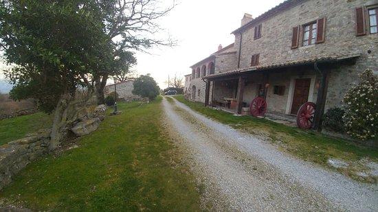 Semproniano, Italy: IMG-20180325-WA0036_large.jpg