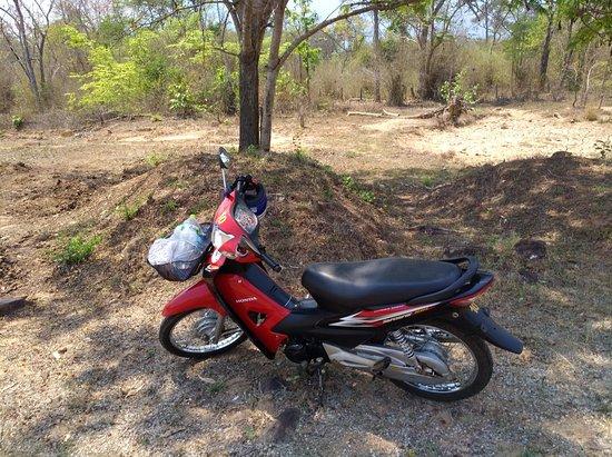 Miss Noy Motorbike