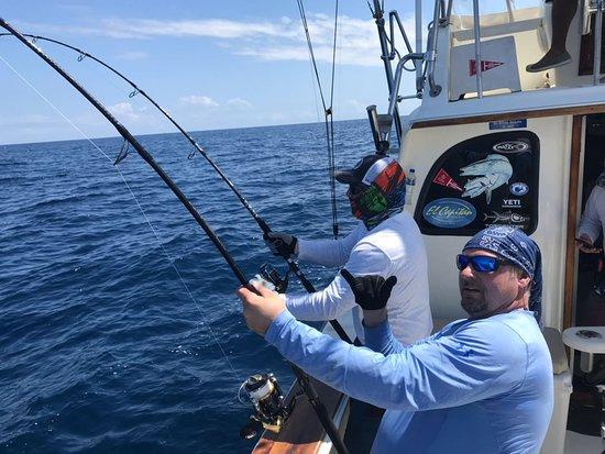 tuna hook up