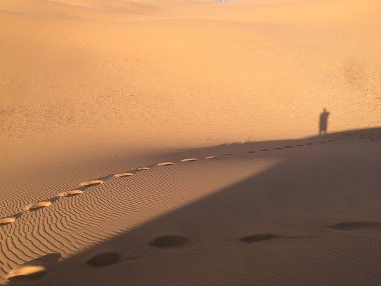 Foto Camels House