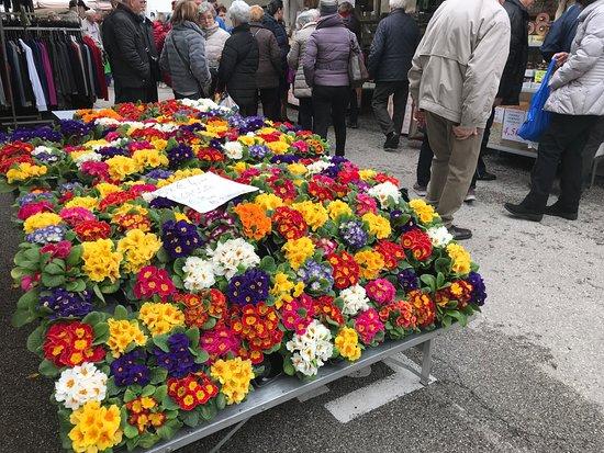 Мондегротто-Терме, Италия: Blumenmarkt 2