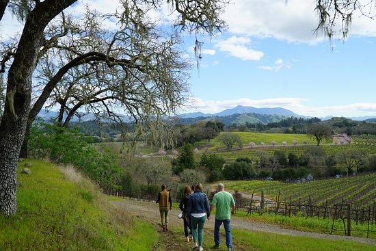 Cloverdale, CA: Warneke Ranch at Chalk Hill.