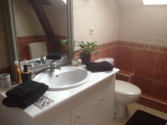 Le Longchamp Bar Brasserie et chambres d'hôtes: la salle d'eau