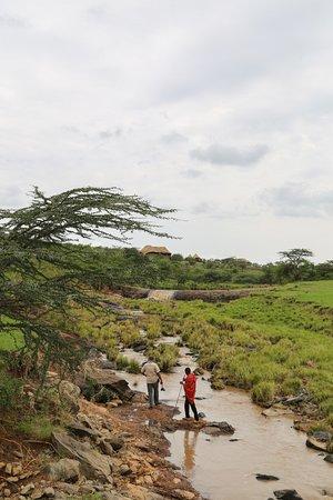 Amani Mara Camp: A bush walk