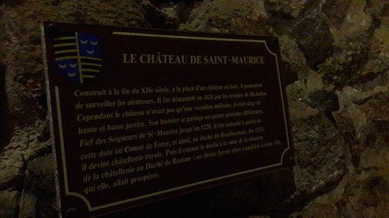 Saint-Jean-Saint-Maurice-sur-Loire, فرنسا: 20180327_102324_large.jpg