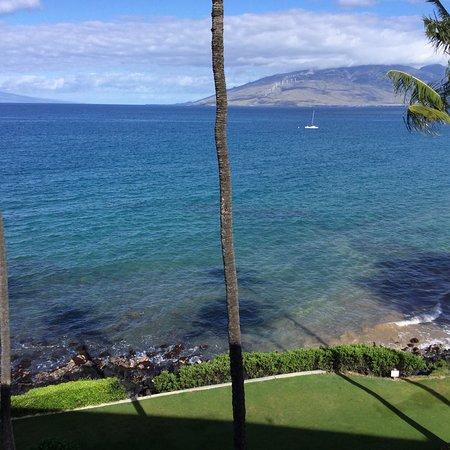 Royal Mauian: photo0.jpg