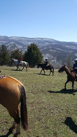 Mountaintop Ranch Wilderness Trail Rides Picture