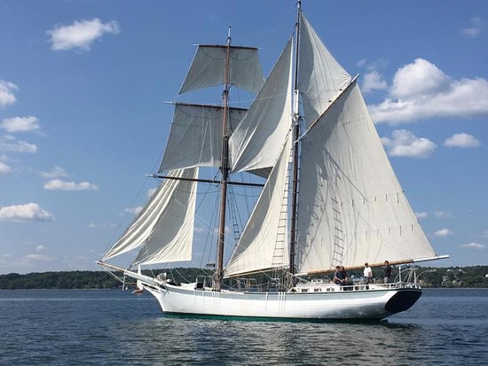 Schooner Actress Sailing out of Belfast Harbor Maine.
