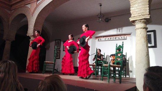 Foto de Tablao Flamenco Cardenal