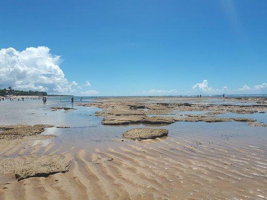 Mucuge Beach : Praia do Mucugê na maré bem baixa