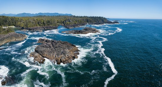 Tofino Air Tours