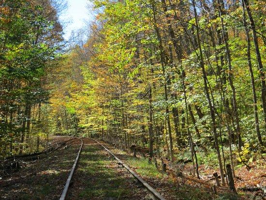 Beautiful fall day on Revolution Rail