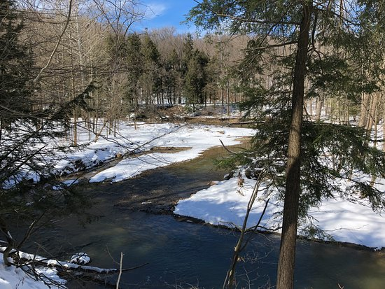 Concord, OH: Big Creek on a winter day