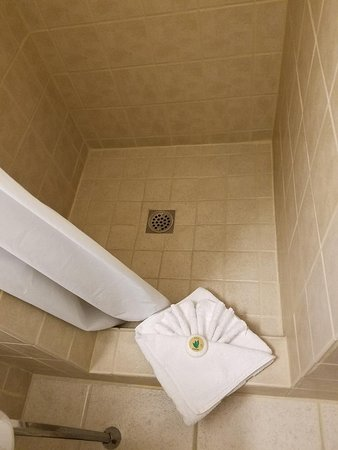 Williams, CA: Spotless shower and more shell folding