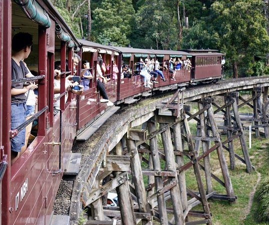 Puffing Billy Railway: Puffing Billy--wooden trestle bridge