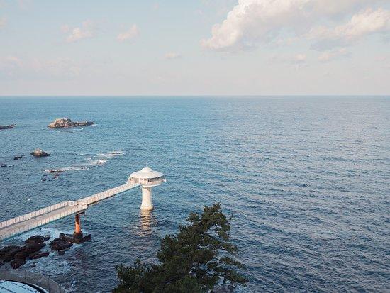 SHIRAHAMA KEY TERRACE HOTEL SEAMORE: 海のただ中に存在する白浜海中展望塔でカラフルな熱帯魚と一緒に海中散歩が楽しめます。
