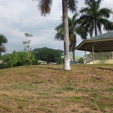 Grounds of Gamboa Rainforest Resort