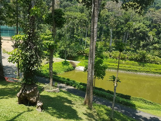 photo8.jpg - Picture of Amaana Plantation Resort, Thekkady ...