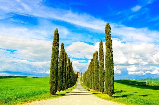 Private Tour in Val d'Orcia: Discover...
