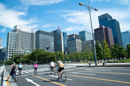 Half-Day Tokyo Cycling Tour with an English-Speaking Professional...