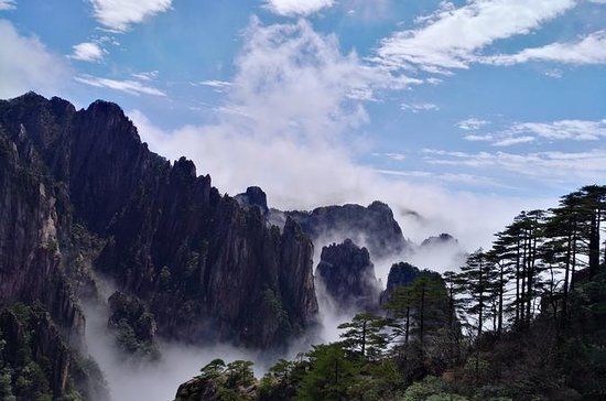 Huangshan summit 1 day private tour