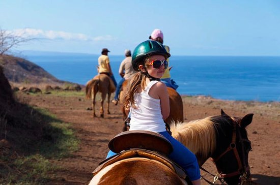 Lahaina Stables Morning Historical...