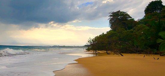 Bluff Beach Photo
